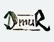 resized_DmuR